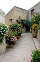 Vicolo  - Piraino (2005 clic)