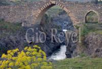 Ponte dei Saraceni sul fiume Simeto  - Adrano (2507 clic)