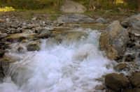 Riserva naturale orientata O rico  - Fiumedinisi (2471 clic)