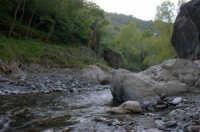Riserva naturale orientata O rico  - Fiumedinisi (2200 clic)