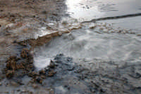 Vulcanelli di fango in eruzione (salinelle)   - Paternò (2994 clic)