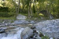 Riserva naturale orientata  - Fiumedinisi (3793 clic)