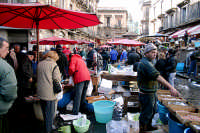 pescheria  - Catania (3204 clic)
