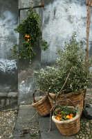 Natale 2005 alla scalinata  - Paternò (1486 clic)