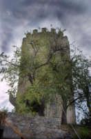 Torre Saracena  - Piraino (2103 clic)