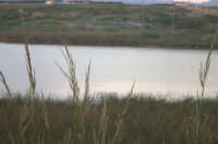 Tramonto su ponte Barca  - Simeto (3260 clic)