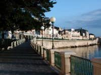 Ortigia  - Siracusa (2685 clic)