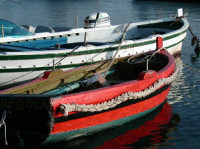 Barche  - Marzamemi (3448 clic)