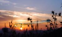 tramonto  - Alì (3428 clic)