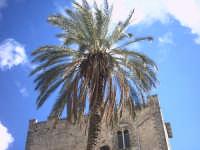 La Torre Ventimiglia  - Montelepre (4928 clic)
