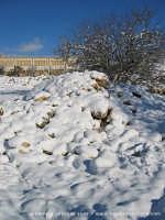 Neve a Ragusa (Gennaio 2005)  - Ragusa (2778 clic)