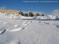 Neve a Ragusa (Gennaio 2005)  - Ragusa (2889 clic)