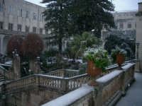 Ragusa sotto la neve, 26 gennaio 2005: il giardino del vescovado  - Ragusa (4766 clic)