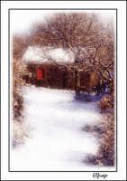 Paesaggio invernale ripreso a Piedimonte. Il rosso della finestra dà calore alla freddezza della neve.  - Piedimonte etneo (7933 clic)