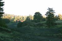 Piano Provenzano, paesaggio.  - Etna (2303 clic)