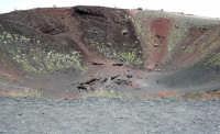 Crateri Silvestri.  - Etna (2146 clic)