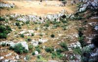 Necropoli.  - Pantalica (4013 clic)