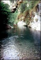 Fiume Anapo.  - Pantalica (7148 clic)