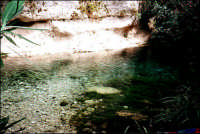 Fiume Anapo.  - Pantalica (7859 clic)