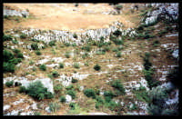 Necropoli di Pantalica.  - Pantalica (3620 clic)