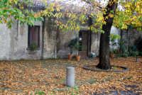 Paesaggio autunnale.  - Santa venerina (9318 clic)