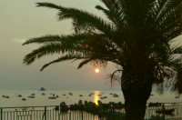 Alba Patti Marina con palma   - Patti marina (6810 clic)