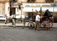 L'ultima carrozzella.  - Siracusa (3228 clic)