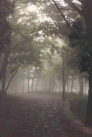 Belvedere Castello, nebbia.  - Buccheri (2545 clic)