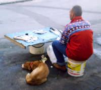 Venditore ambulante di pesce.  - Siracusa (2278 clic)