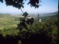 La valle di Goso.  - Buccheri (1675 clic)