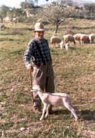 Vecchio pastore con l'agnellino.  - Giarratana (6612 clic)