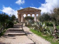 Tempio  - Segesta (4599 clic)