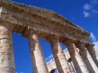 Tempio  - Segesta (2757 clic)