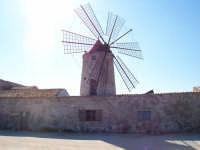Mulino a vento (Museo del sale)  - Trapani (12722 clic)