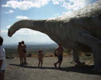 dinosauro  - Paternò (7056 clic)