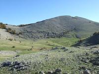 Battaglietta m 1600 circa Escursione organizzata dall'Associaizone Sportiva Madonie Outdoor . Il sentiero parte da Piano Battaglia a quota 1630 m. e giunge a Pizzo Carbonara a 1979 m. pe rpoi ritornare a PIano Battaglia. Il tempo di percorrenza è di circa 3,30 h  - Piano battaglia (3641 clic)