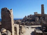 Acropoli di Selinunte  - Selinunte (4499 clic)