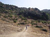 Gruppo di escursionisti. Il percorso Conoscere per conoscersi ha previsto la visita alle grotte del Saraceno a Pastonello e dei briganti a Sallemi, e la vista panoramica da Timpa del Grillo, a  1346 m, da dove si vedono di giorno più di 10 paesi. Nella zona della cime della montagna ci sono numerosi cocci di terracotta, che secondo alcuni esperti risalgono a più di duemila anni fa. Tra lo stupore dei componenti dell'allegra banda, nel bosco di Gallina è stata avvistata un'aquila.    - San mauro castelverde (1837 clic)