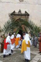 Domenica delle palme 2009  - San mauro castelverde (4045 clic)