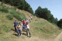 Escursione CAI: Trazzere, cappelle votive e antichi casali- 24 giugno 2007  - San mauro castelverde (1619 clic)