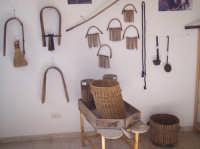 MUSEO ETNOANTROPOLOGICO E DELL'AMICIZIA TRA I POPOLI. Sala dedicaca agli allevatori di bestiame  - San mauro castelverde (3129 clic)