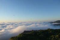 Primavera maurina: nebbia e rondini...  - San mauro castelverde (1076 clic)
