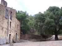 Borgo di Malia: Le case baronali, la fontana e il secolare frassino  - San mauro castelverde (2900 clic)