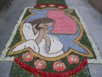 Questo è il disegno che ho fatto io nell'Infiorata del Corpus Domini nell'anno 2004!!  - San pier niceto (9521 clic)