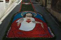 Infiorata 2007....il quadro rappresenta il Sacro Cuore Di Gesù e l'autrice sia della foto che del quadro sono io Katia Passalacqua con l'aiuto di Franco Mazzagatti.  - San pier niceto (11168 clic)