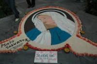 Infiorata 2007.....Quadro della Madonna davanti alla Chiesa Madre del Paese. L'autore è Maio Salvatore.  - San pier niceto (12787 clic)