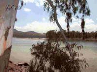 - Lago di pozzillo (4172 clic)