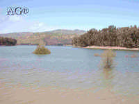 - Lago di pozzillo (3956 clic)