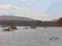 - Lago di pozzillo (5174 clic)