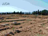 rovine  - Megara hyblea (4830 clic)